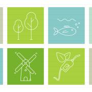 nature-icons-squares-presentationdeck-3